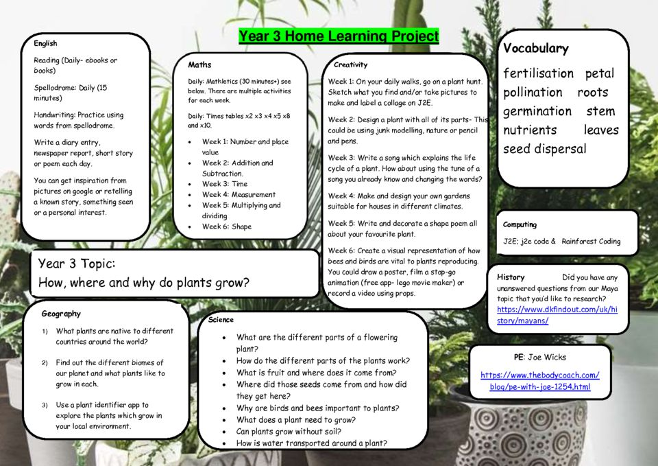 thumbnail of Y3 Summer 1 Home Learning